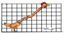 ارتفاع أسعار الدجاج