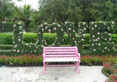 هذه صور حديقة الحب في 7.jpg