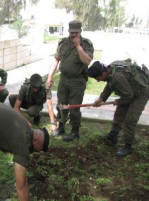 تنظيف مقبرة شهداء الجيش العراقي في جنين .. شاهد الصور