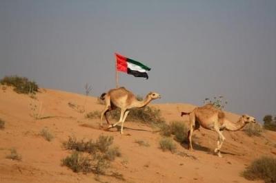 صور ومناظر طبيعية من الامارات