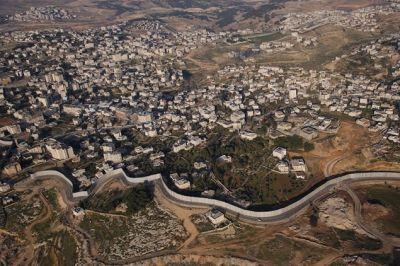 الافعى الاسرائيلية الصخرية في الضفة الغربية 3884059192.jpg