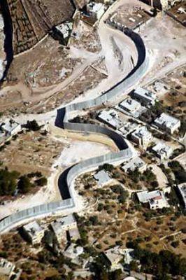 الافعى الاسرائيلية الصخرية في الضفة الغربية 3884059193.jpg