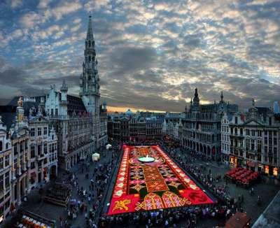 السجادة العجيبة في بلجيكا 3909762140.jpg
