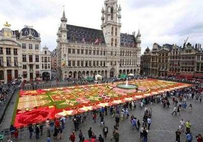 السجادة العجيبة في بلجيكا 3909762149.jpg