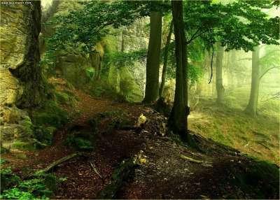 صور ومناظر طبيعية من الاردن