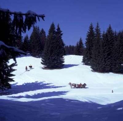 صور ومناظر طبيعية من رومانيا 3909763114
