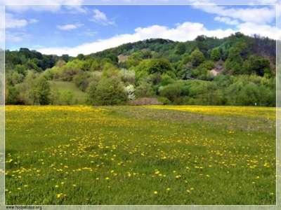 صور ومناظر طبيعية من رومانيا 3909763134