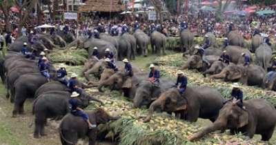 بالصور.. الاحتفال بعيد الفيل تايلاند 3909766689.jpg