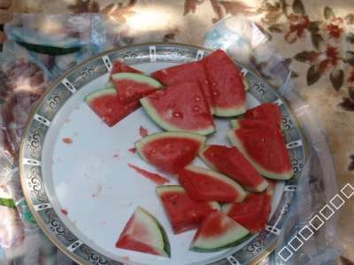 الفرق تناول البطيخ
