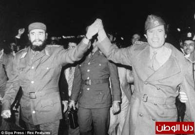 بالصور صحيفة ديلي البريطانية: أطلقَ النار القذافي 3909773546.jpg