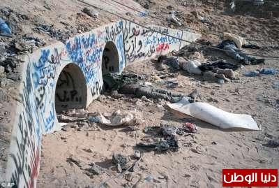بالصور صحيفة ديلي البريطانية: أطلقَ النار القذافي 3909773551.jpg