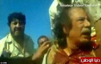 بالصور صحيفة ديلي البريطانية: أطلقَ النار القذافي 3909773557.jpg