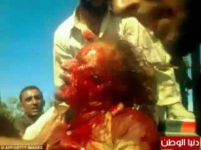 بالصور صحيفة ديلي البريطانية: أطلقَ النار القذافي 3909773562.jpg