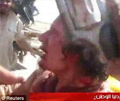 بالصور صحيفة ديلي البريطانية: أطلقَ النار القذافي 3909773563.jpg