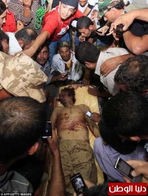 بالصور صحيفة ديلي البريطانية: أطلقَ النار القذافي 3909773567.jpg