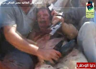 بالصور صحيفة ديلي البريطانية: أطلقَ النار القذافي 3909773575.jpg