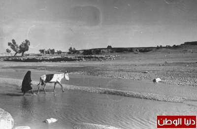 بصور رونق السعودية 1942م 3909773833.jpg