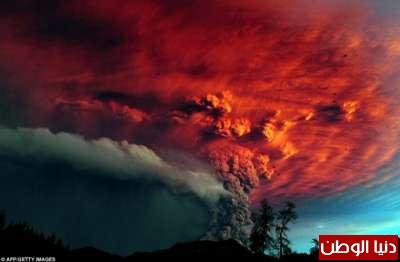 صور مذهلة تحكي أحداث عام 2011 3909784418.jpg