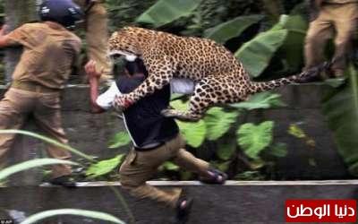 صور مذهلة تحكي أحداث عام 2011 3909784429.jpg