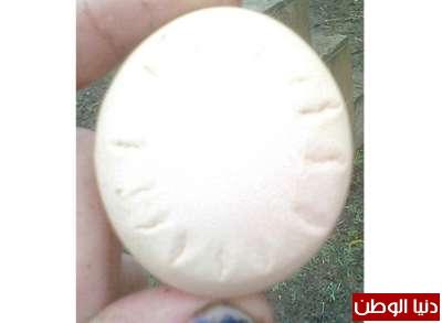 الدجاجة المعجزة تبيض بيضاً يتنبأ 3909790883.jpg