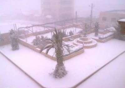 فلسطين تكتسي بالثوب الأبيض 3909792628.jpg