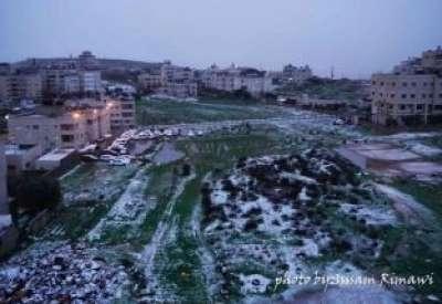 فلسطين تكتسي بالثوب الأبيض 3909792629.jpg
