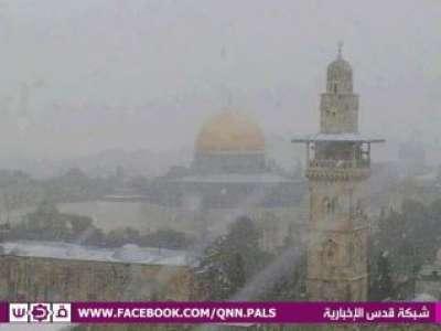فلسطين تكتسي بالثوب الأبيض 3909792632.jpg