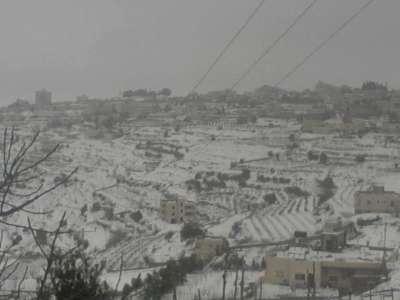 فلسطين تكتسي بالثوب الأبيض 3909792634.jpg