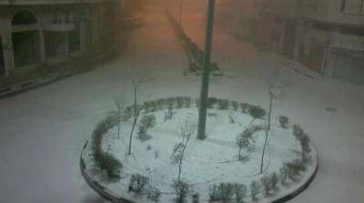 فلسطين تكتسي بالثوب الأبيض 3909792640.jpg
