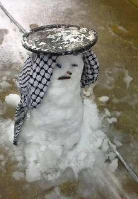 فلسطين تكتسي بالثوب الأبيض 3909792643.jpg