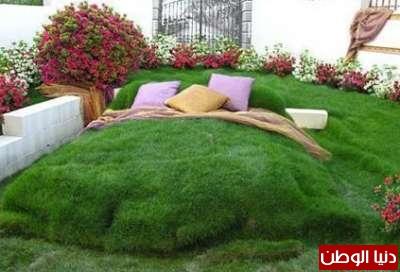 زيني حديقتك بطريقة تليق بك 3909803445.jpg