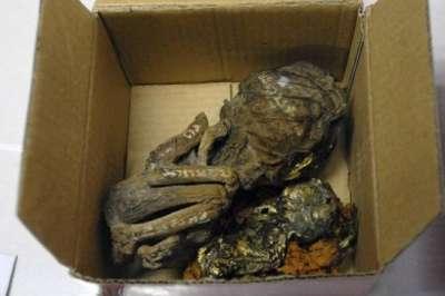 جثث أطفال مطلية بالذهب لممارسة السحر الأسود 3909808163.jpg