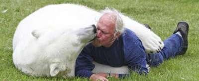 صداقة بين رجل ودب قطبي 3909812951.jpg