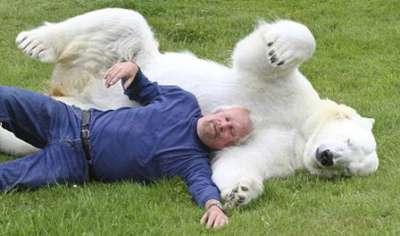 صداقة بين رجل ودب قطبي 3909812953.jpg