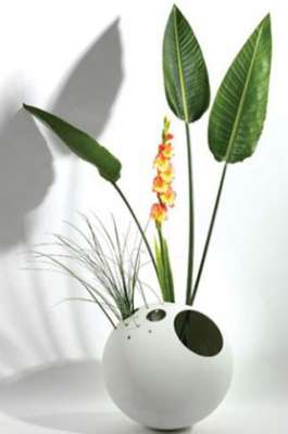مزهريات غريبة ومميزة لتزيني بها منزلك 3909829476.jpg