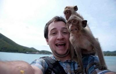 أطرف الحيوانات المضحكة لعام 2012 3909863672.jpg