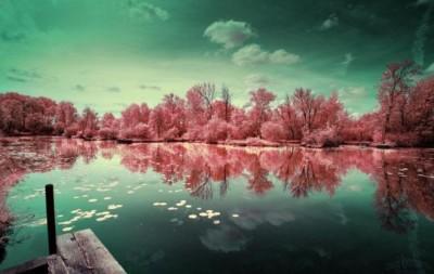 خلابة الريف الفرنسى تشبه بلاد العجائب الملونة 3909867118.jpg