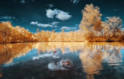 خلابة الريف الفرنسى تشبه بلاد العجائب الملونة 3909867119.jpg