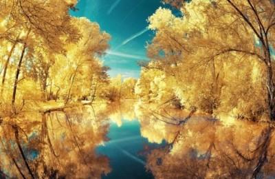 خلابة الريف الفرنسى تشبه بلاد العجائب الملونة 3909867121.jpg
