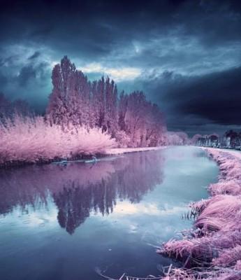 خلابة الريف الفرنسى تشبه بلاد العجائب الملونة 3909867123.jpg