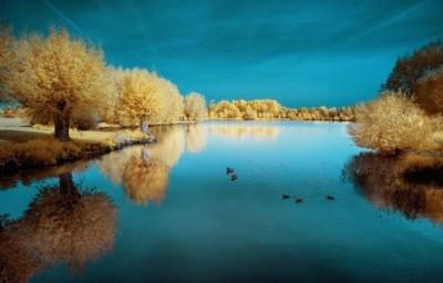 خلابة الريف الفرنسى تشبه بلاد العجائب الملونة 3909867126.jpg