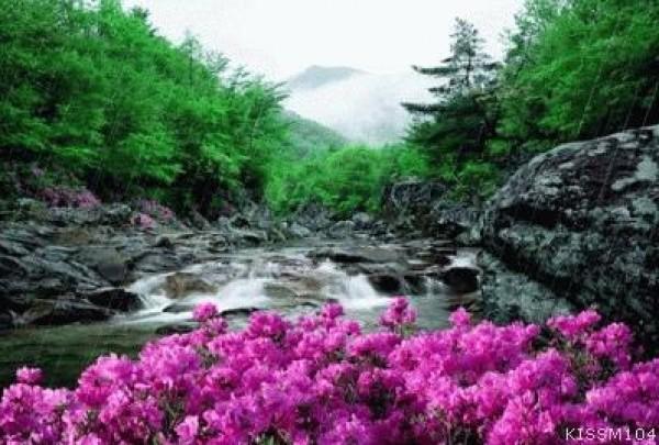 لأجمل لقطات وصور قطرات المطر تداعب الطبيعه للعام 2013 3909871006.jpg