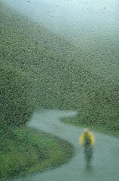 لأجمل لقطات وصور قطرات المطر تداعب الطبيعه للعام 2013 3909871012.jpg