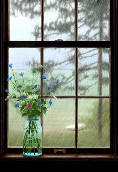 لأجمل لقطات وصور قطرات المطر تداعب الطبيعه للعام 2013 3909871017.jpg