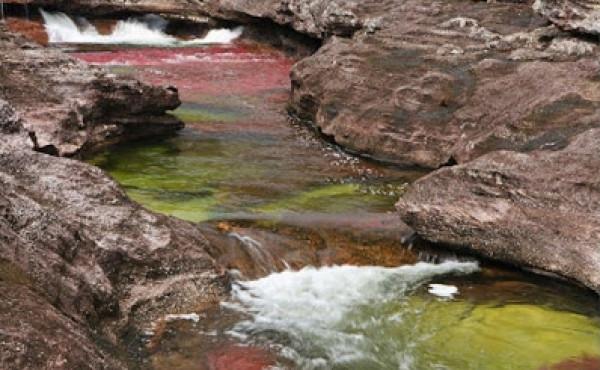 نهر الألوان الخمسة ( أجمل أنهار العالم ) 3909886638.jpg
