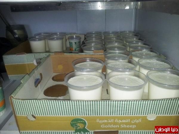 بالصور:صناعة الجبنة الايطالية بأيادي فلسطينية لتنافس الأجبان الاسرائيلية 3909897295.jpg