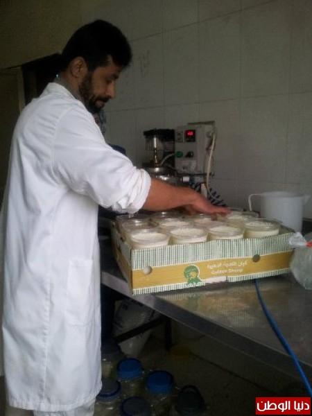 بالصور:صناعة الجبنة الايطالية بأيادي فلسطينية لتنافس الأجبان الاسرائيلية 3909897315.jpg