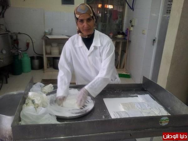بالصور:صناعة الجبنة الايطالية بأيادي فلسطينية لتنافس الأجبان الاسرائيلية 3909897318.jpg