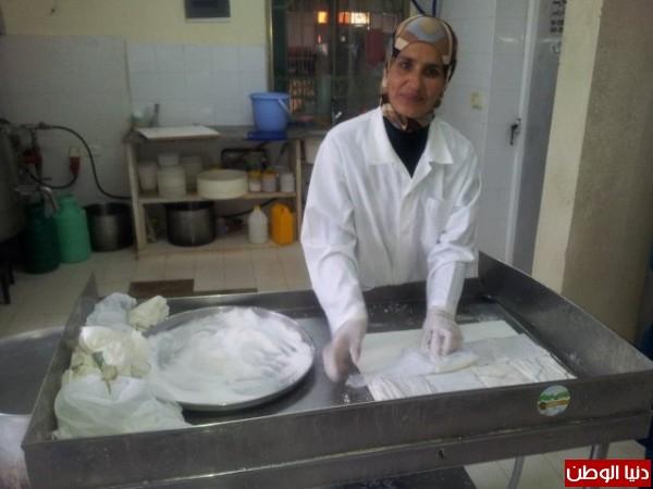 بالصور:صناعة الجبنة الايطالية بأيادي فلسطينية لتنافس الأجبان الاسرائيلية 3909897320.jpg