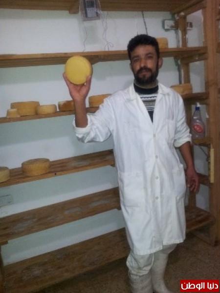 بالصور:صناعة الجبنة الايطالية بأيادي فلسطينية لتنافس الأجبان الاسرائيلية 3909897323.jpg